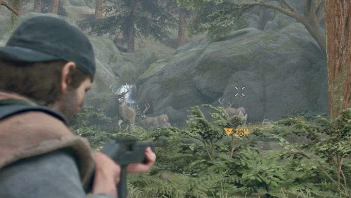 ディーコンが鹿を狩猟している様子