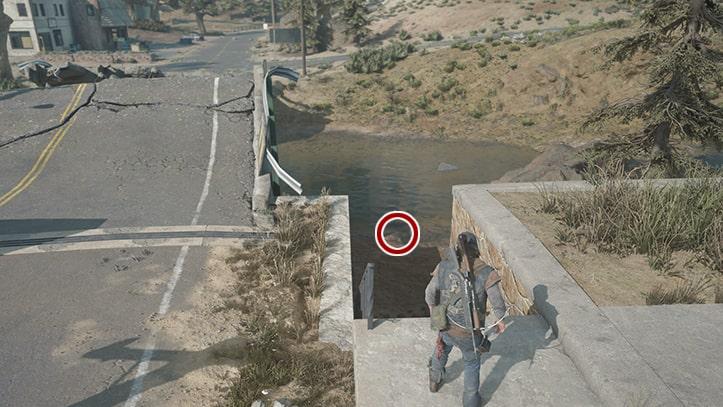 川辺で痕跡を調べる箇所