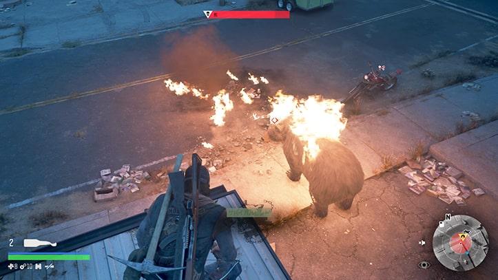 屋根から熊へ火炎瓶を投げる様子