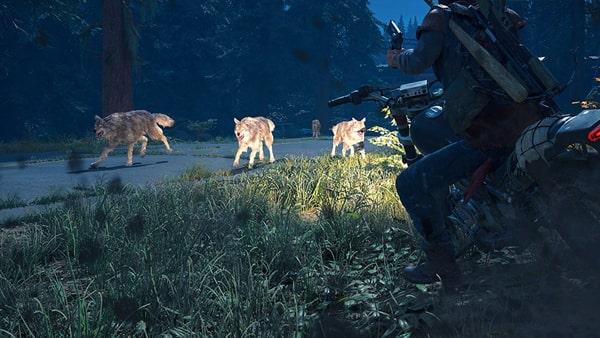 狼と戦うディーコン