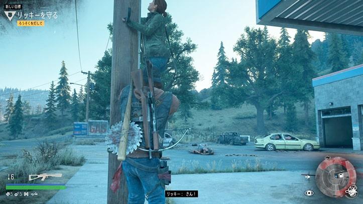 リッキーが電柱に登るカットシーン