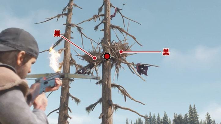 効率の良いクライアーの巣の燃やし方