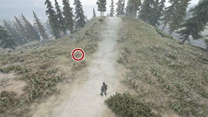 リッパーの死体がある風景画像