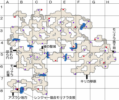 モリナラ大森林のマップ