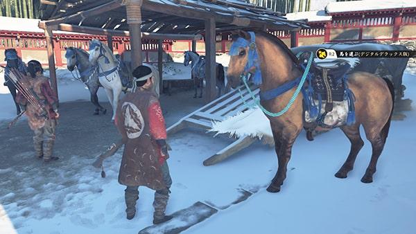 新しい馬選びの光景