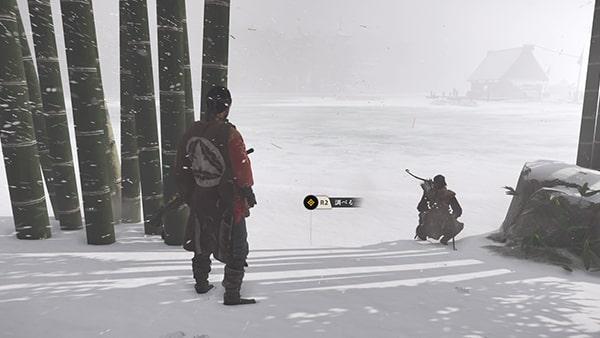 凍った湖を調べる様子