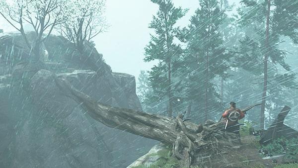 木を渡る場所の位置