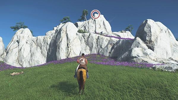 紫の冠の頂きの場所