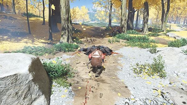 足跡を辿り、馬の遺体があるエリアの風景
