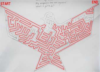 迷路の鳩の謎