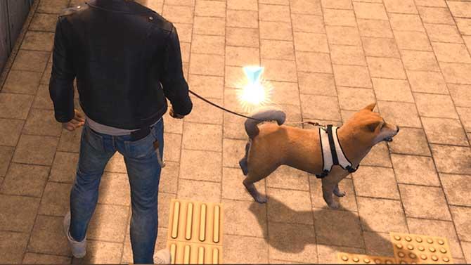 探偵犬が素材を拾う様子