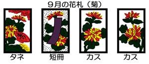 9月の花札(菊)