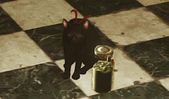 黒猫とグリーンジェル
