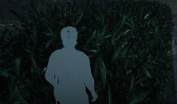 草むらに隠れるセバスチャンの画像