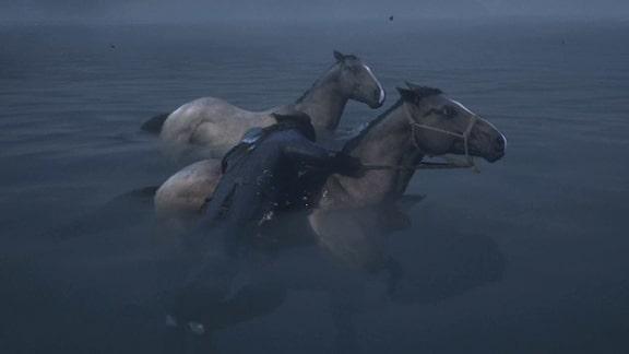 インディアンたちの馬を捕獲するシーン