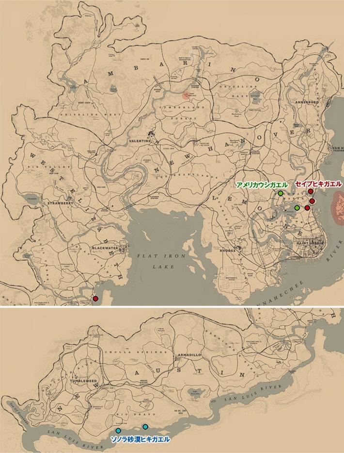 アメリカウシガエル、セイブヒキガエル、ソノラ砂漠ヒキガエルの居場所マップ