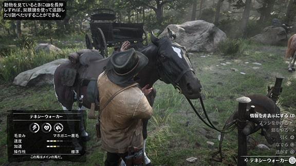 馬の面倒を見ているアーサー