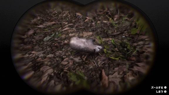 狩猟家9のフクロネズミ