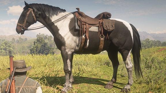 軍馬の画像