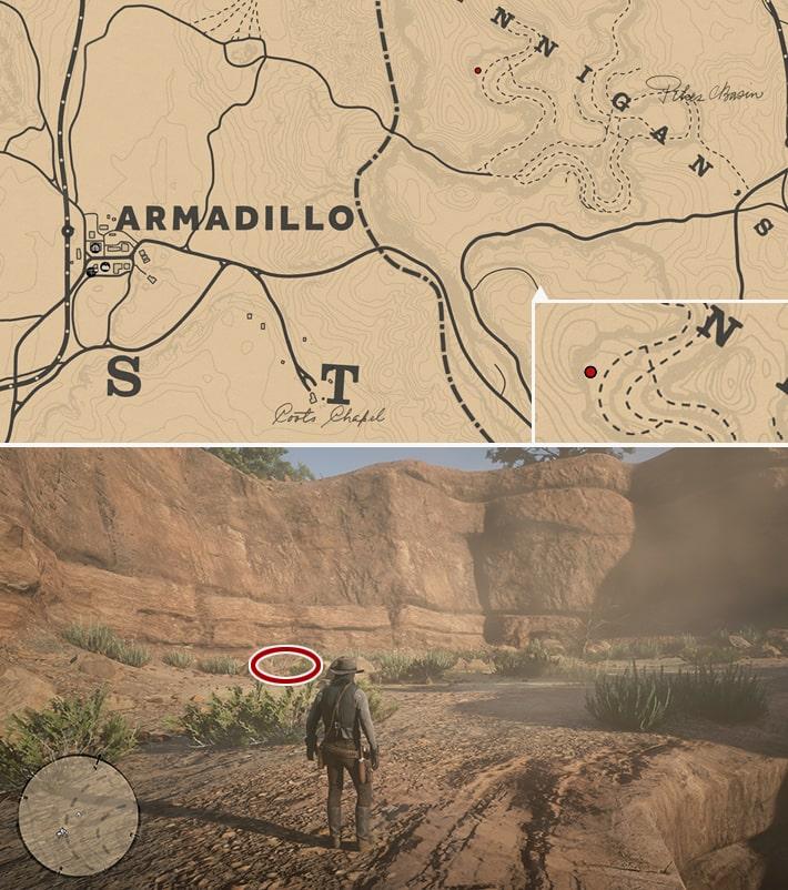恐竜の化石23の発見場所マップ