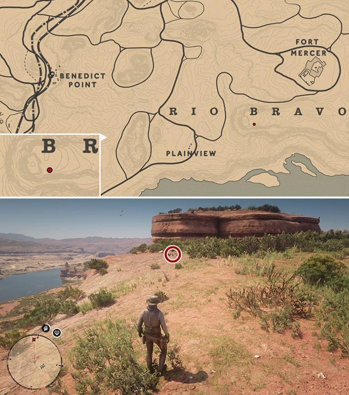 恐竜の化石26の発見場所マップ