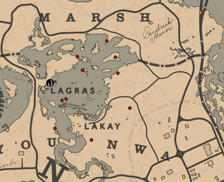 クイーン(ラン科)の入手場所のマップ