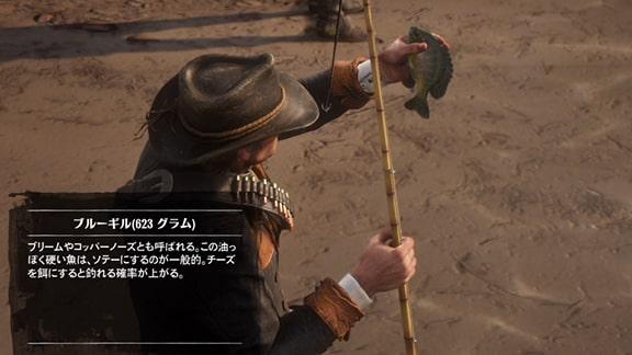 ブルーギルを釣っているアーサーの画像