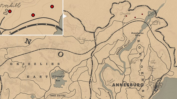 ウィンターグリーンベリーの入手場所のマップ