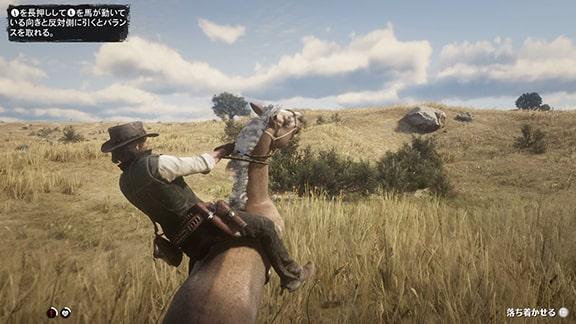 野生の馬の捕獲シーン