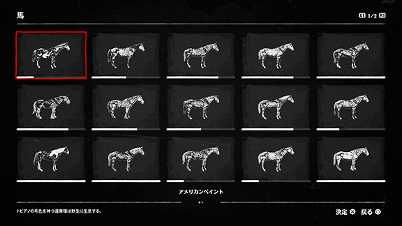 馬の図鑑画像