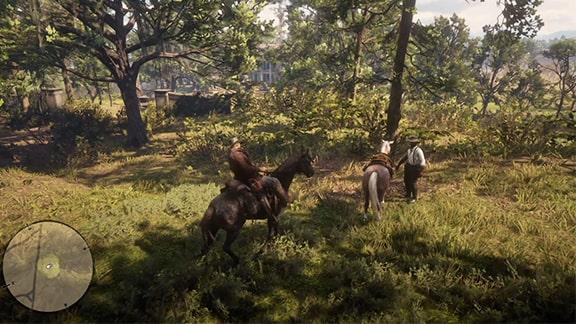 木々の間に馬を隠す場所の画像