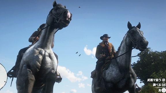 RDR2の馬画像