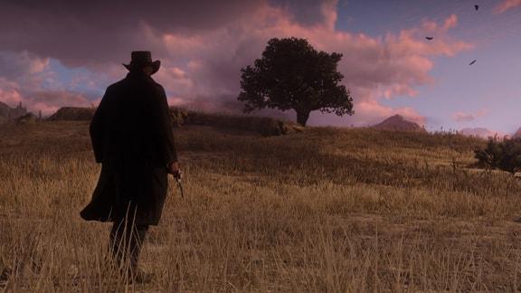 アーサーと夕日の荒野の画像