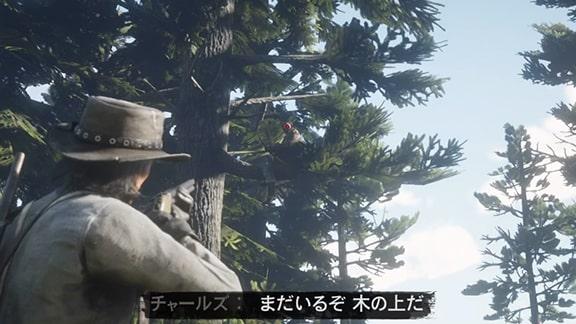 木の上にるスキナーブラザーズ
