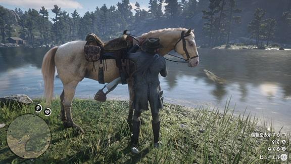 馬のビューエルの画像