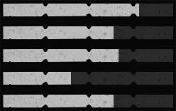 ヴァーミントライフルの性能