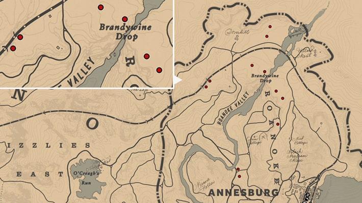 ワイルドキャロットの入手場所のマップ