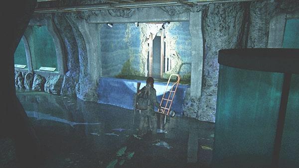 水族館の壁に穴が空いている箇所