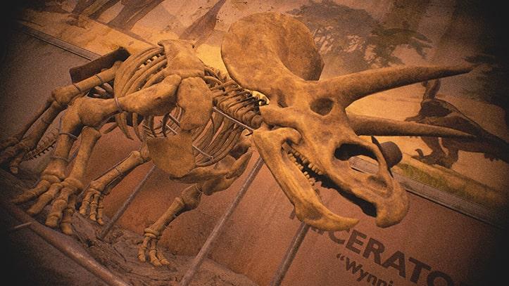 ラストオブアス2のフォトモードのハットサウルス