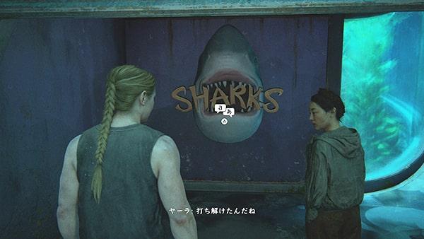 水族館にあるサメの部屋