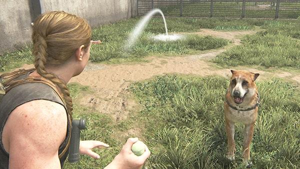 犬にボールを投げて遊ぶアビーのシーン
